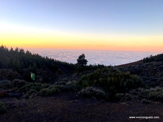 1603_26.Tenerife390 copia
